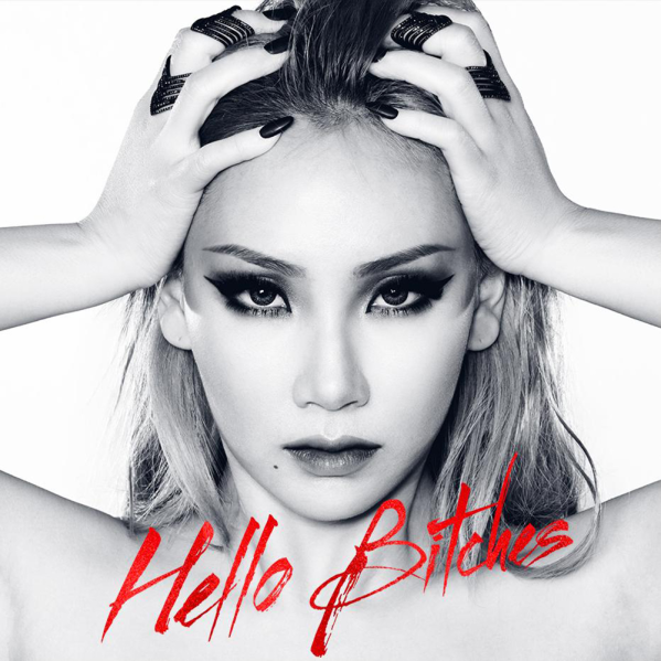 Hello Bitches (Single)